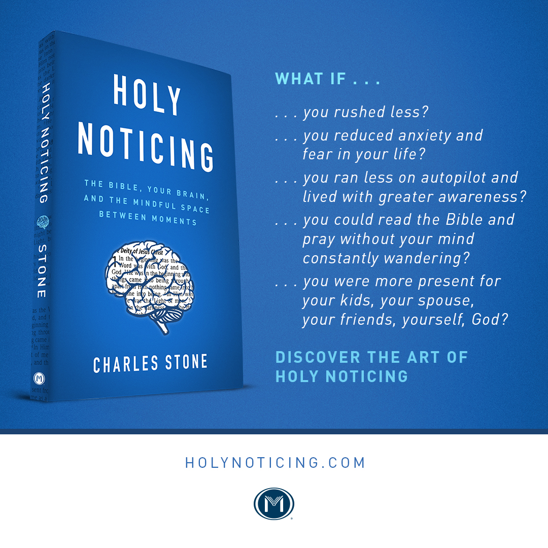 Holy Noticing book ad
