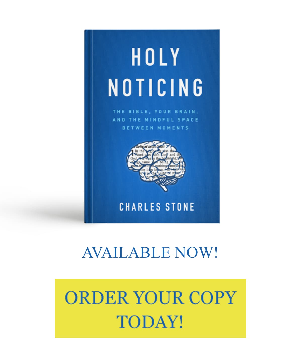 Holy Noticing book available now!
